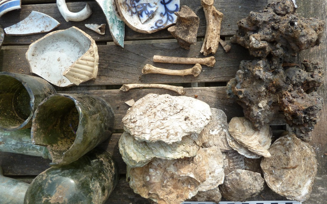Oyster shells, bones and crab's claw 1870s