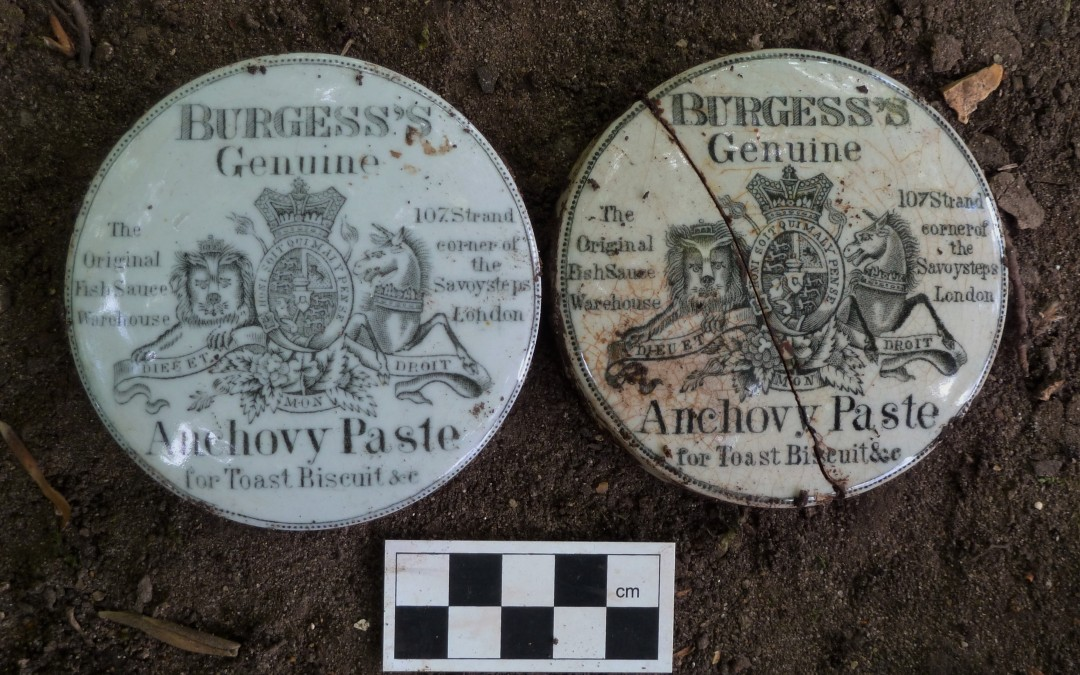 Lids for Burgess's Genuine Anchovy Paste