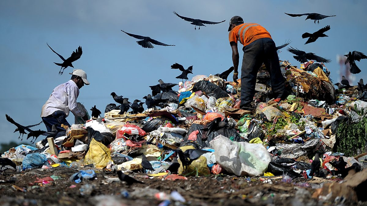 Men scouring a rubbish dump